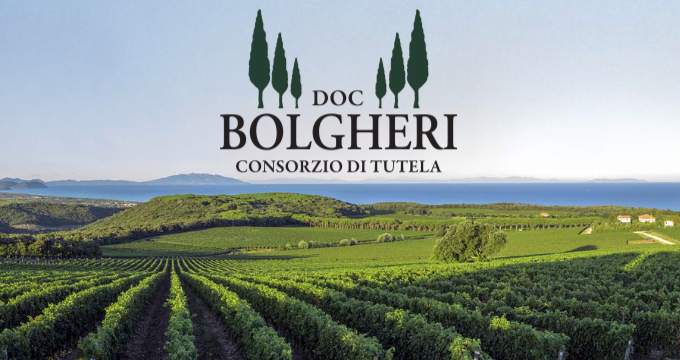 Bolgheri, come si crea una DOC mondiale